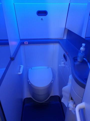 Bathroom in Icelandair Boeing 737 MAX 8 TF-ICE Jökulsárslón // Source: Alina Daneliia (specially for Flugblogg)