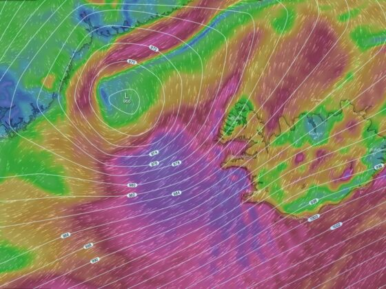 Wind chart on the surface level in the evening 5.november 2020 // Source: Windy.com
